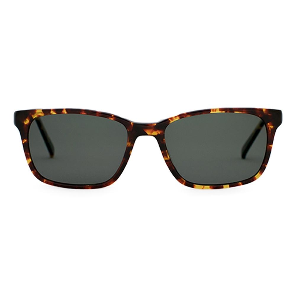 Tortoise Sunglasses | Francesa Tortoise | Parkman