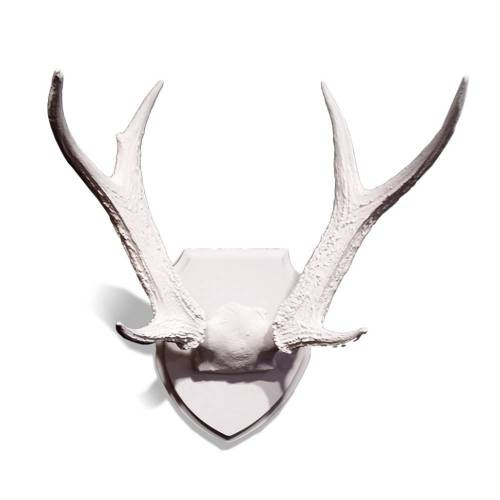 Whitetail Deer Antlers on Medallion