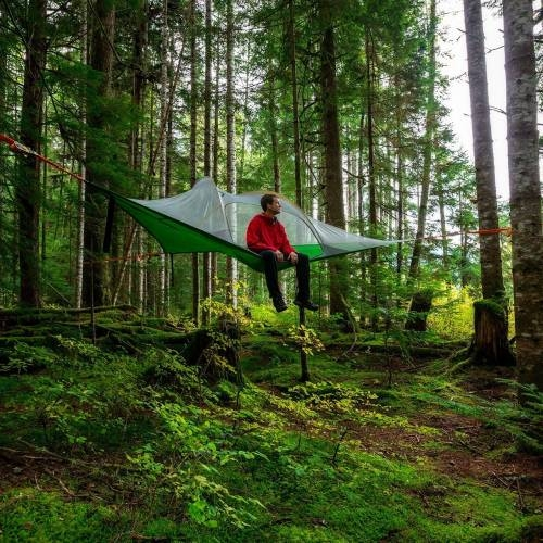 Stingray Tree Tent