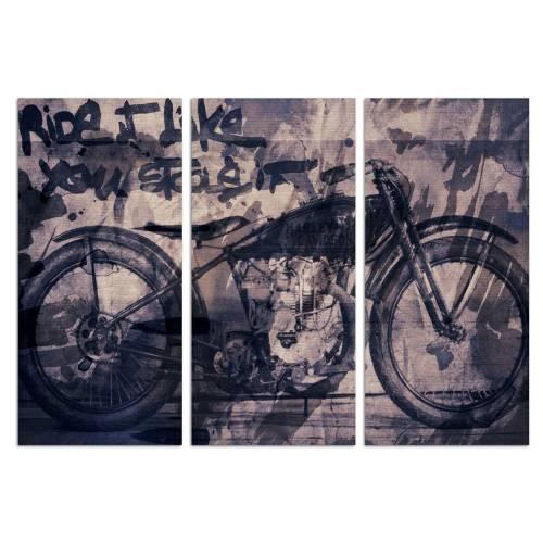 Ride it Triptych | Canvas Art