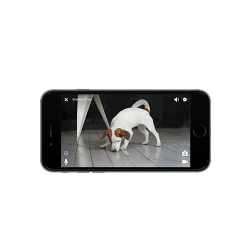 Petcube Play | Matte Silver | Watch and talk to your pet