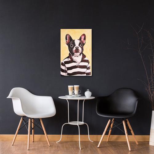 Bulldog With Stripy Shirt